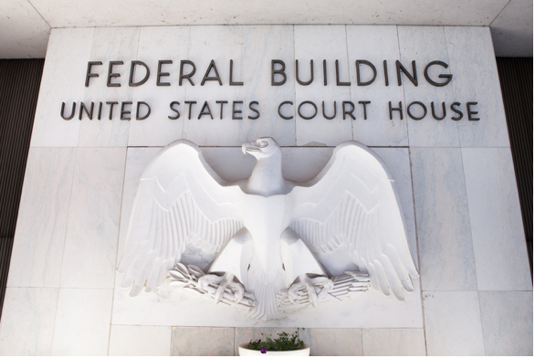 Federal Detention Hearings